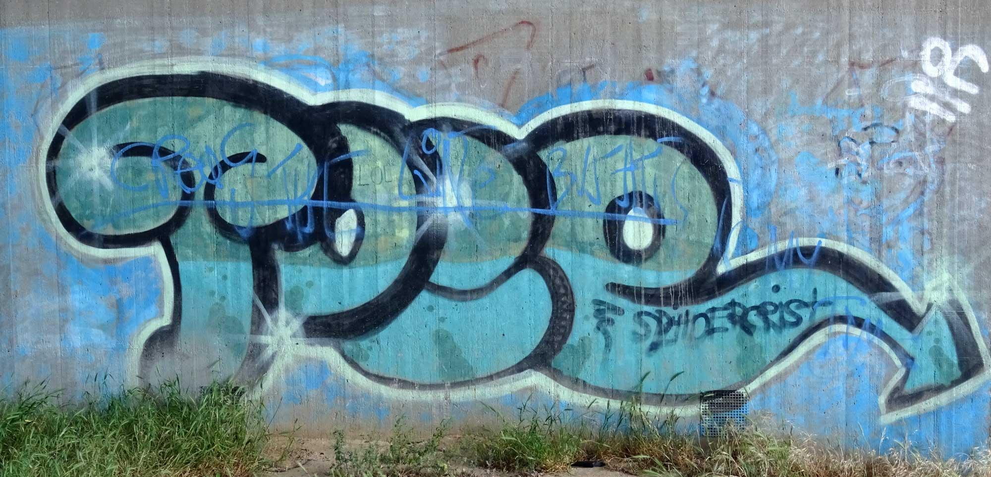 Graffiti unter der Talbrücke Worms-Pfeddersheim - PORE