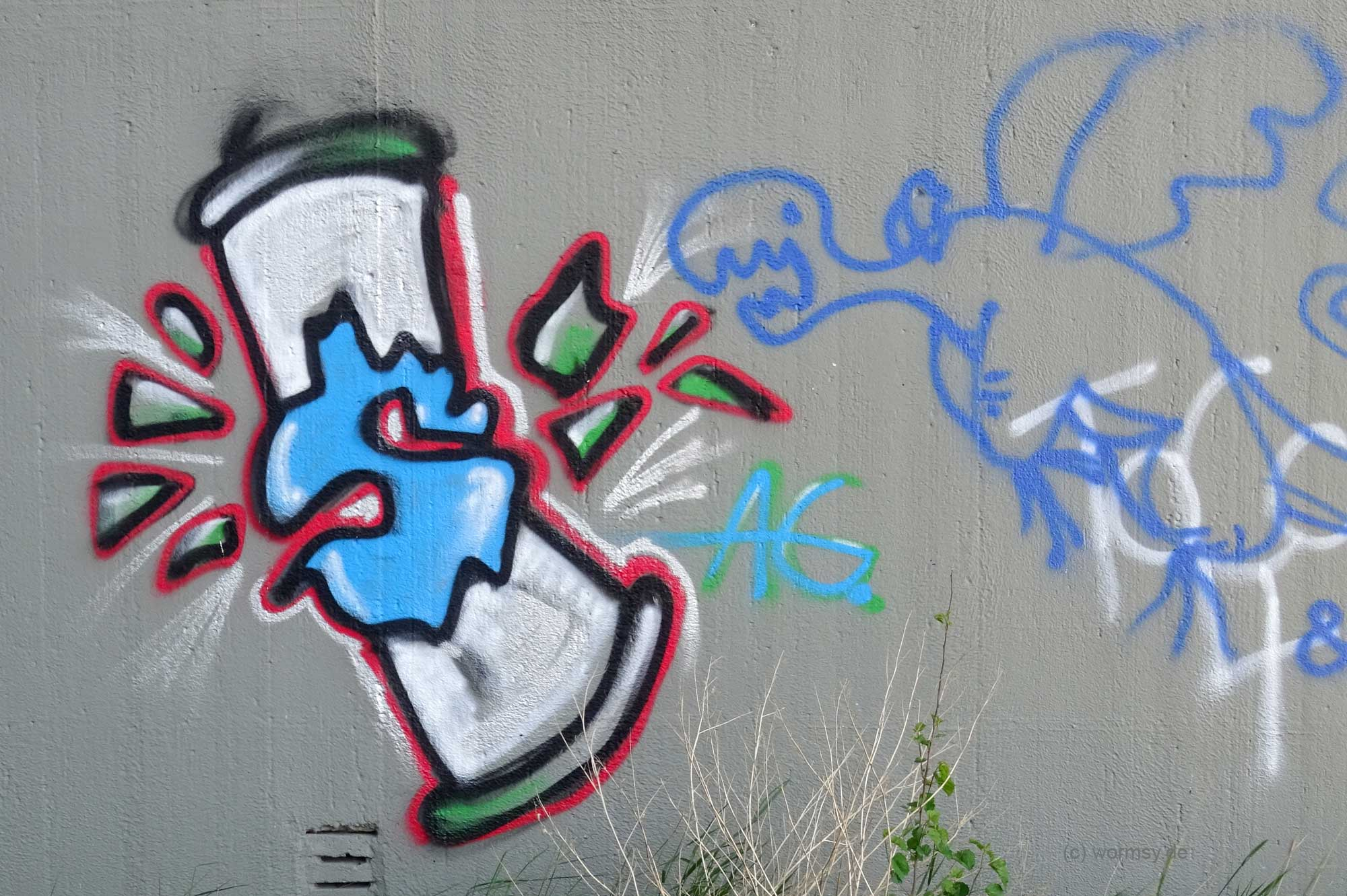 Graffiti unter der Talbrücke Worms-Pfeddersheim Nord