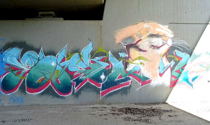 Graffiti unter der Talbrücke Worms-Pfeddersheim (Nord)