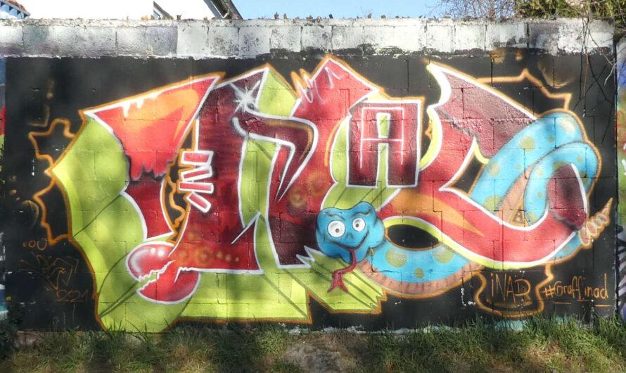 Graffiti HoF Worms Weinsheimer Straße März 2021. Es ist zu eng!